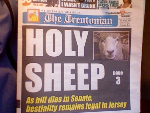 Holy Sheep—Bestiality Remains Legal